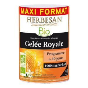 Herbesan Gel Roy B Pot40g